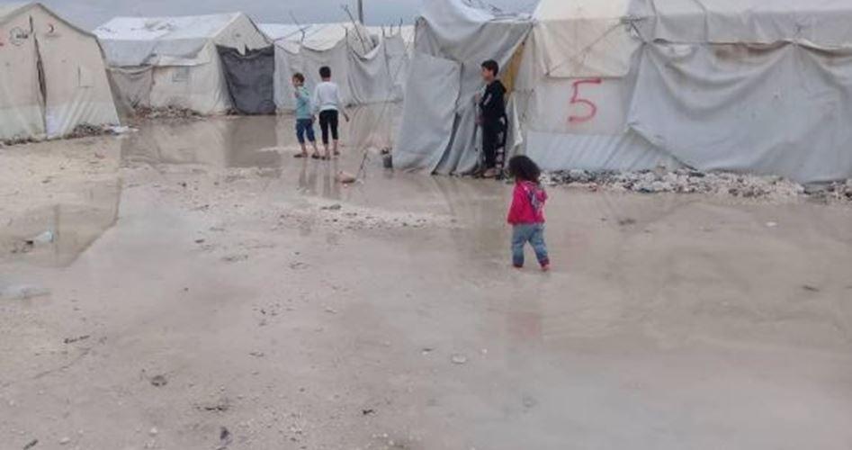 مخيم دير بلوط