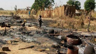 داعش - نيجيريا