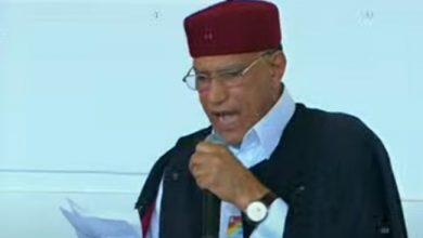 ممثل القبائل الليبية